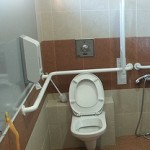grab-bars-toilet