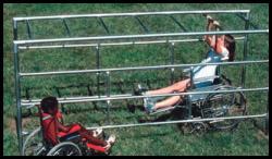 handicapped-monkey-bars